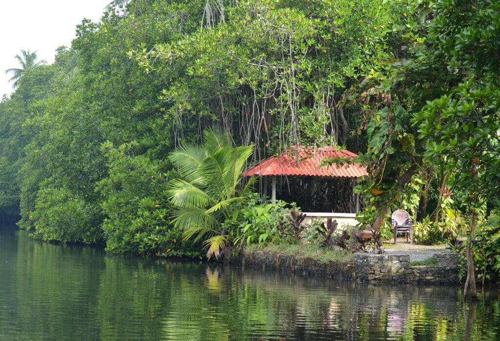 Image of Exotic house to Bentota River