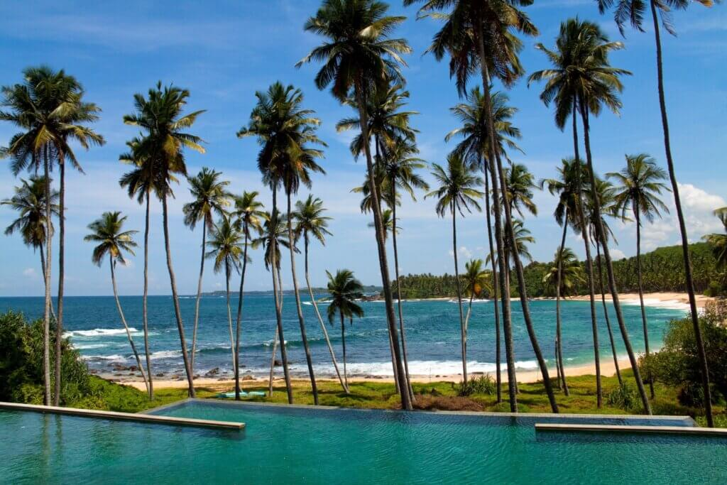 Image of Sandy beach of Tangalle with thin palm trees