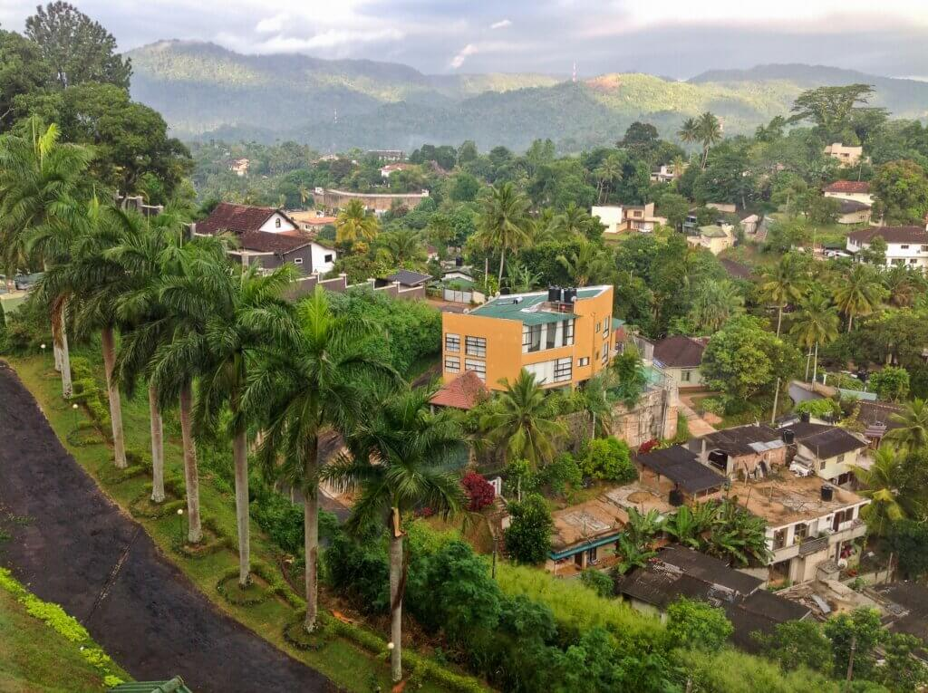 Image of View of jungle in Kandy city