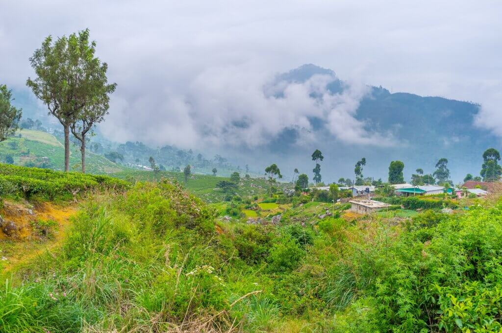 Image of small village and mountains in Haputale