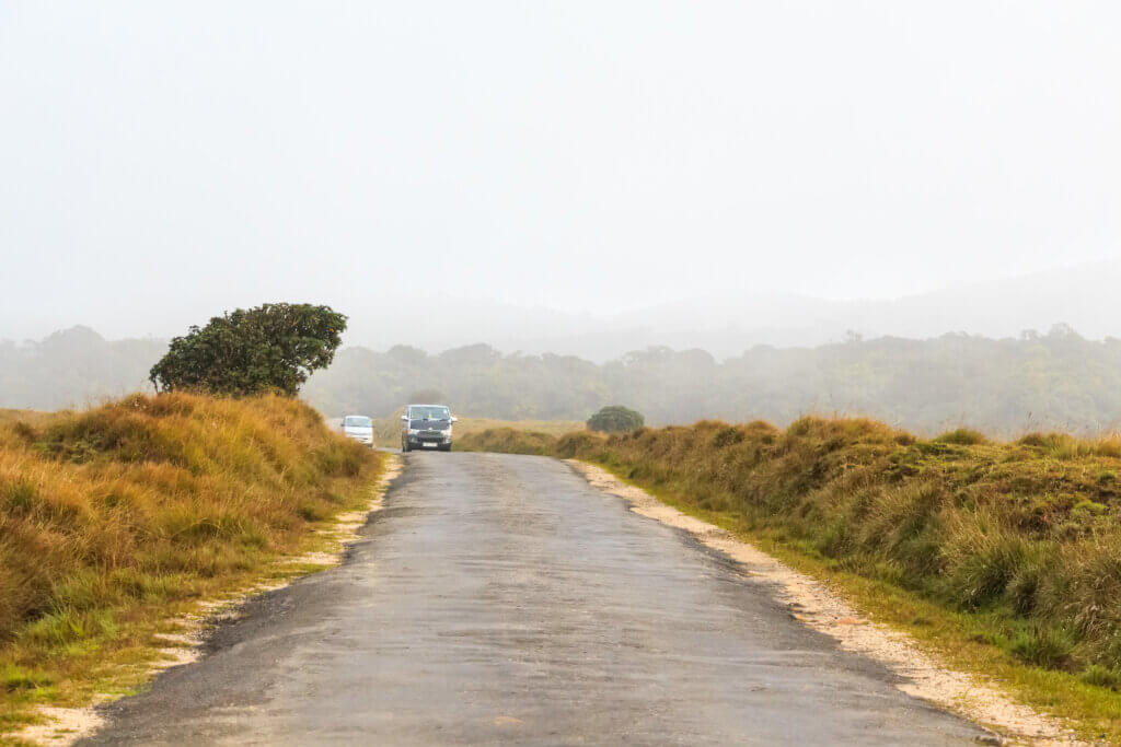 view with road in Horton Plains