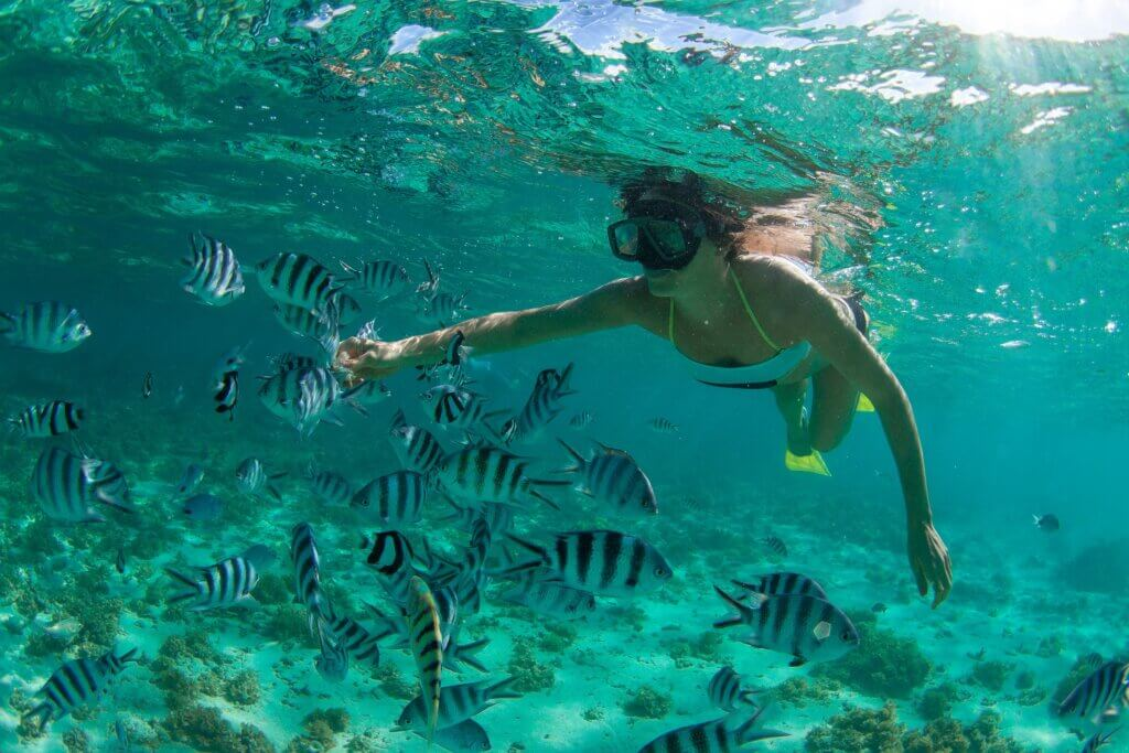 Image of Beautiful girl snorkeling in the Indian Ocean