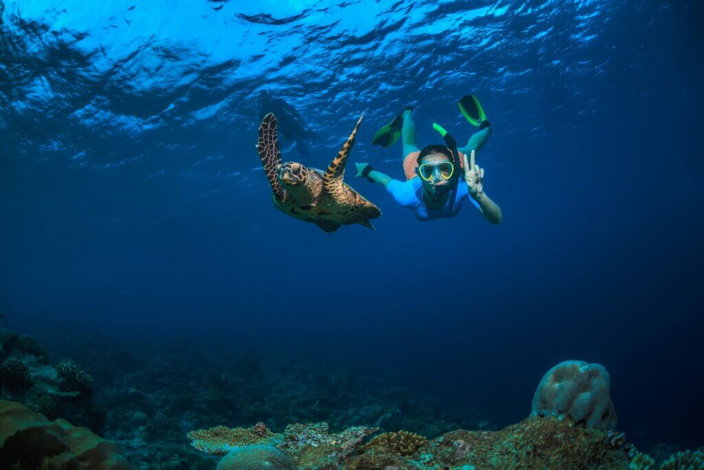 Image of A girl and turtle underwater