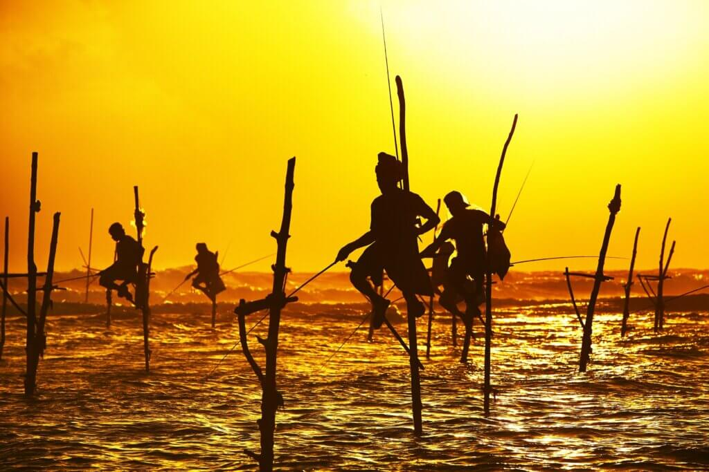 Image of Silhouettes of the traditional fishermen at the sunset near Galle