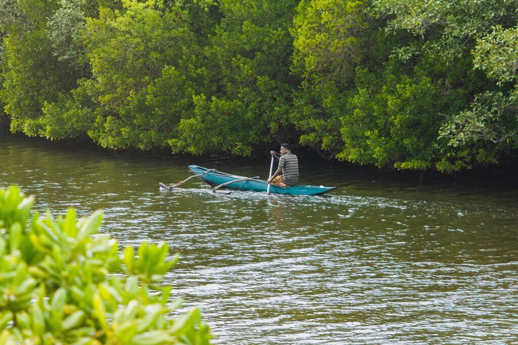Image of Traditional fisherman in dugout canoe in Tangalle