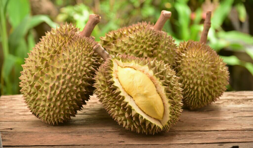 Image of durian fruit