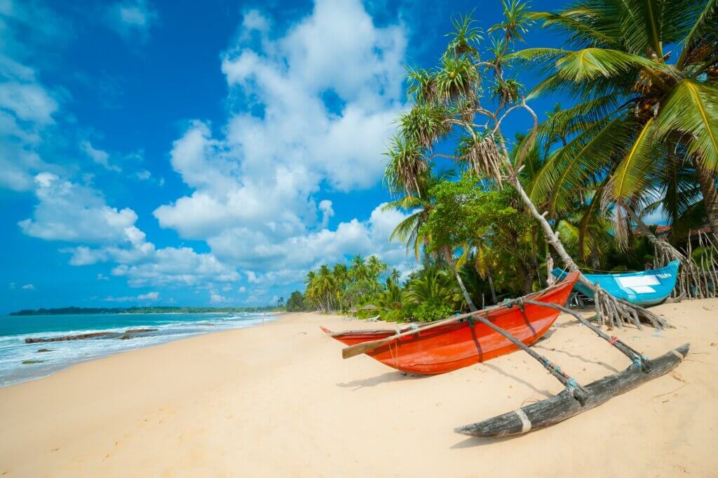 Image of Tropical beach with palms and fishing boats