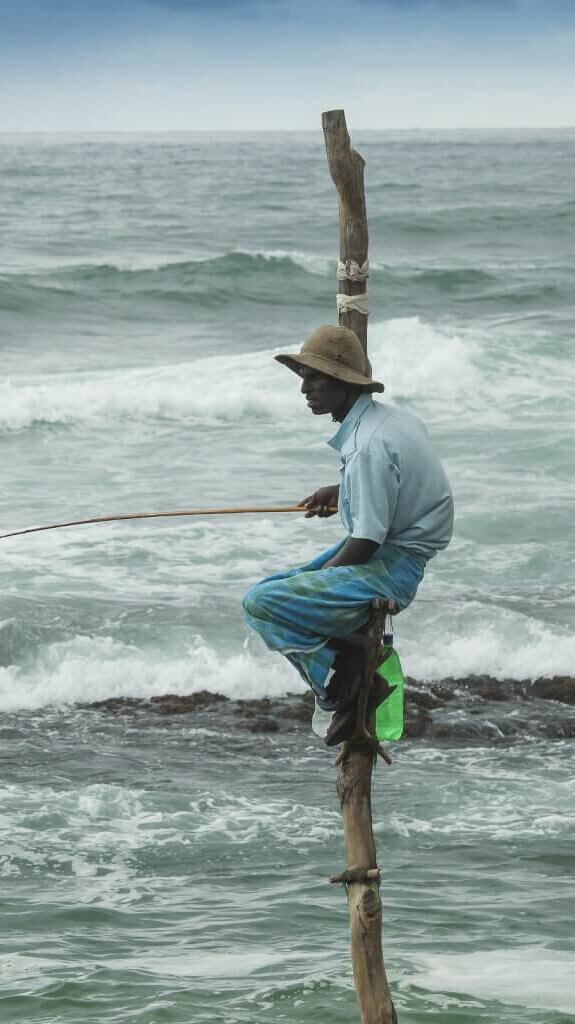 Image of Man fishes by sitting on perches in water Ahangama